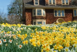 Spring House Cleaning Tips Universal Cleaners Hamilton Ontario