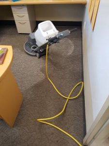 carpet care services carpet cleaning commercial Hamilton