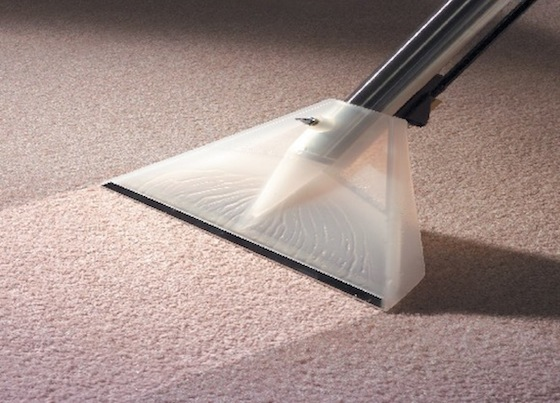 Why Those Carpet Stains Won't Come Out